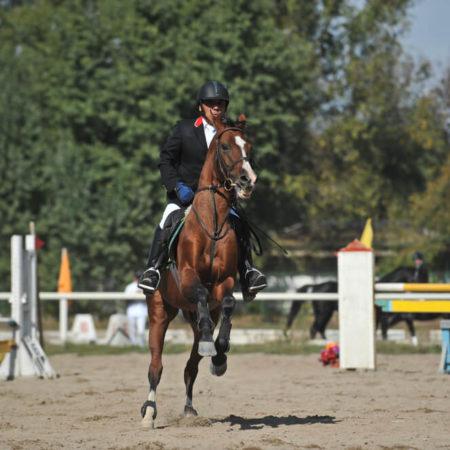 NJ Horsemen Saga Continues in New Jersey